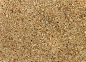 Какой рис нужен для плова_разновидности риса