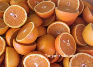 Апельсины-польза и вред для здоровья_апельсины долькам