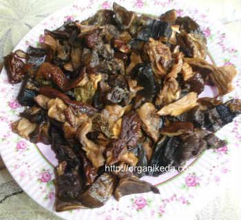 Грибной суп из сушеных белых грибов-рецепт_нарезать грибы кубиком