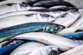 Продукты, содержащие йод_рыба