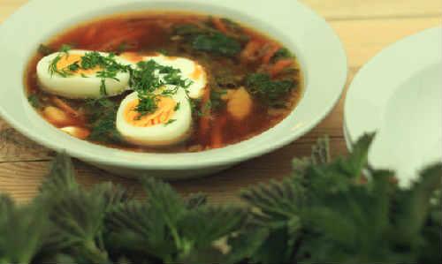 Зеленый борщ со щавелем и яйцом рецепты
