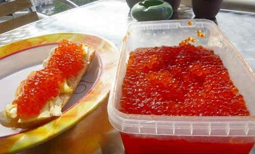 Как солить красную икру в домашних условиях