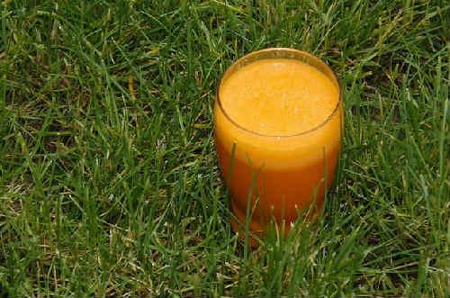Morkovnyj sok na zimu v domashnih uslovijah