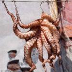 Как приготовить щупальца кальмара