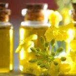 Рапсовое масло вред и польза