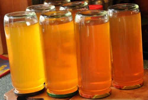Jablochnyj sok na zimu cherez sokovyzhimalku1