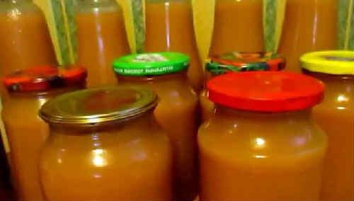 Jablochnyj sok na zimu cherez sokovyzhimalku6