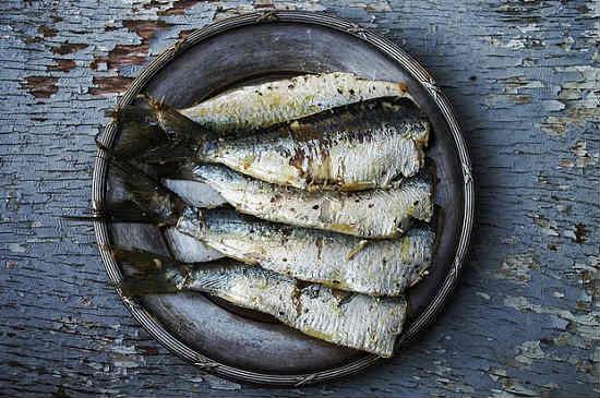 Сардины какая это рыба