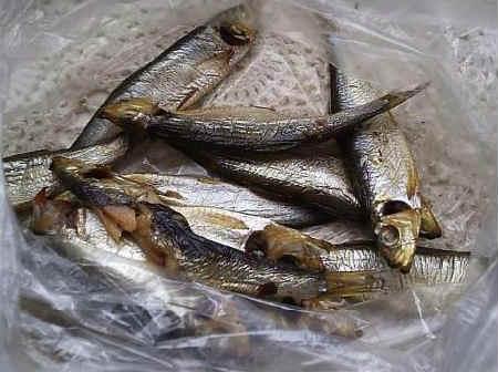 SHproty eto kakaya ryba1