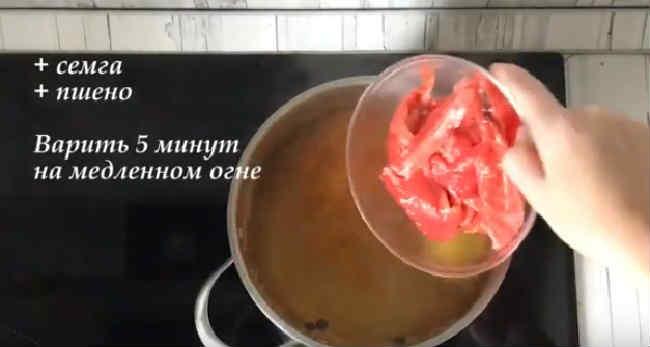 Uha iz semgi recepty29