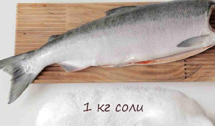 Semga zapechennaya v duhovke22-1