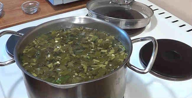 Klassicheskij recept shchavelevogo supa s yajcom i kuricej6