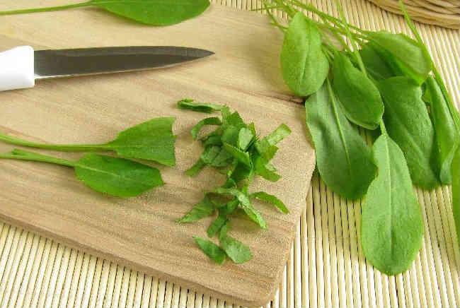 Klassicheskij recept shchavelevogo supa s yajcom i kuricej9