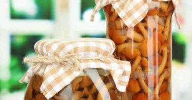 Опята маринованные на зиму — 8 рецептов