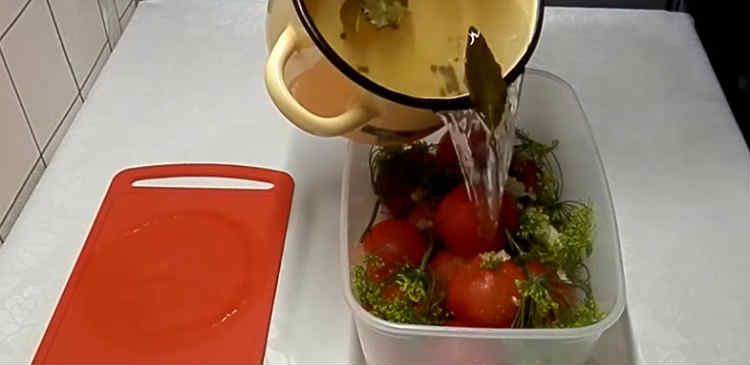 Pomidory v sobstvennom soku27