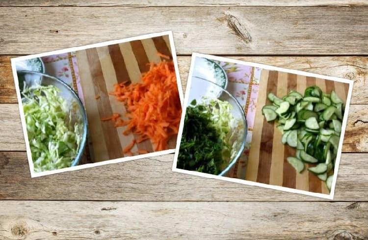 Salat iz svezhej kapusty s morkov'yu13