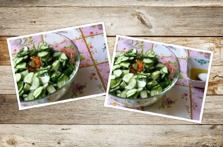 Salat iz svezhej kapusty s morkov'yu14