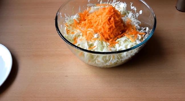 Salat iz svezhej kapusty s morkov'yu2