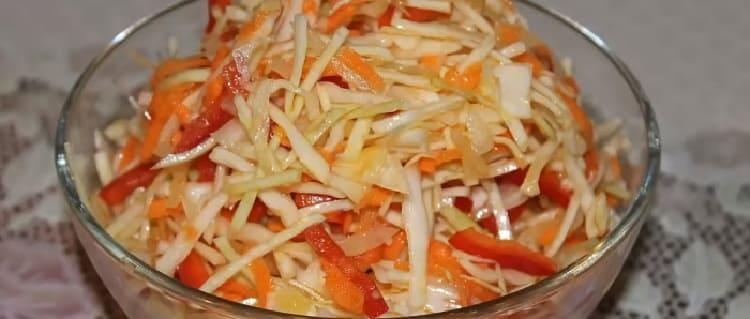 Salat iz svezhej kapusty s morkov'yu23