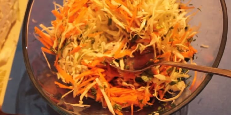 Salat iz svezhej kapusty s morkov'yu40
