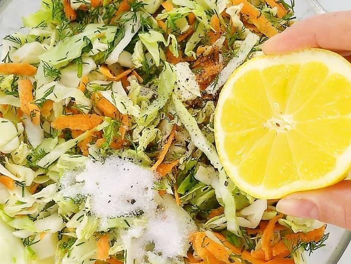 Salat iz svezhej kapusty s morkov'yu8