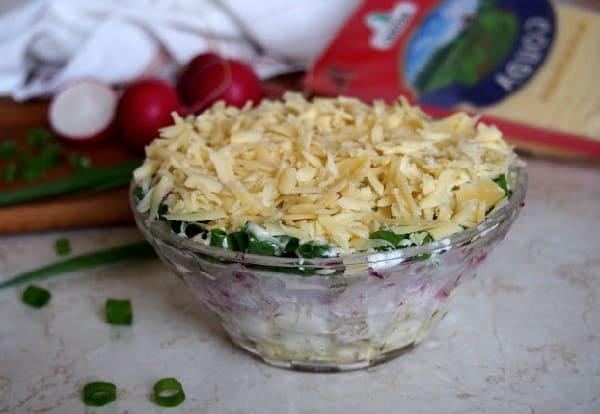 Salat s rediskoj8